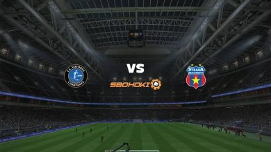 Photo of Live Streaming  Viitorul Constanta vs FCSB 19 Januari 2021