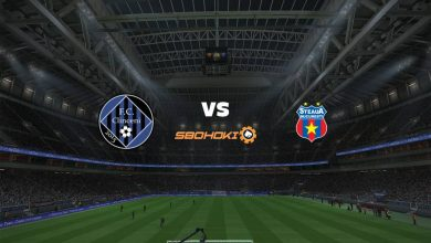 Photo of Live Streaming  Academica Clinceni vs FCSB 22 April 2021