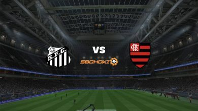 Photo of Live Streaming  Santos vs Flamengo 28 Agustus 2021